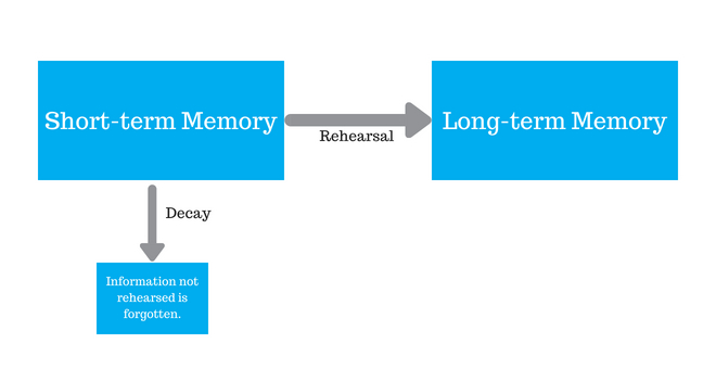 Theory diagram image with a box labelled 'short-term memory' and an arrow labelled 'Rehearsal' pointing to a 'long-term memory'box and an arrow labelled 'Decay' pointing to a 'Information not rehearsed is forgotten'